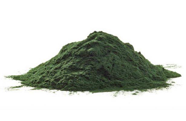 Tảo bột Spirulina